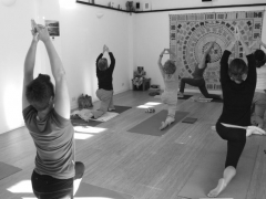 Alex Yoga
