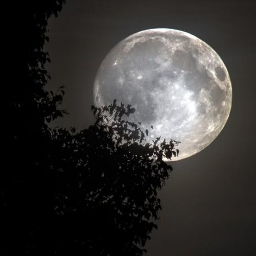enjoy-the-full-moons-glow